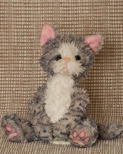 Balsam Fir <br /> Gray Tabby Cat